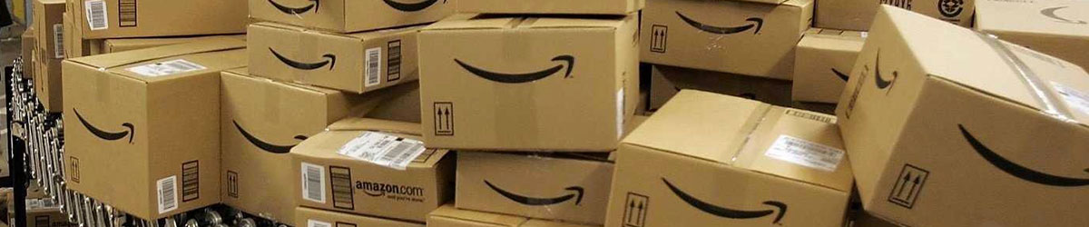 Amazon with box on demand by Panotec